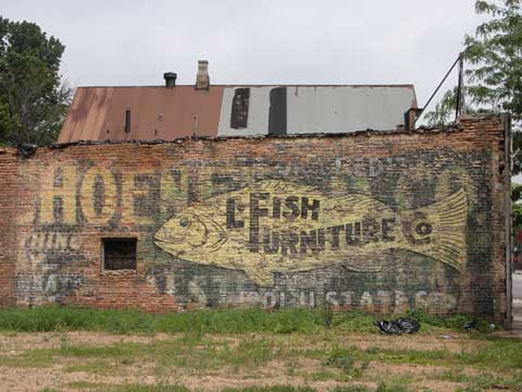 Maniraptora chicago for L fish furniture